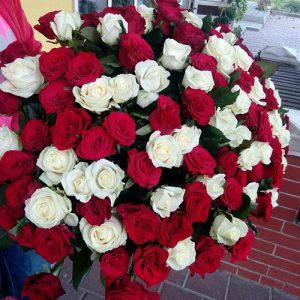 101 червона і біла роза букет на ювілей Трускавець фото