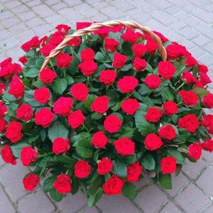 101 червона роза в кошику Трускавець
