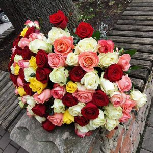 101 троянда мікс різних сортів Трускавець