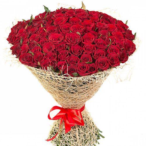 фото 101 червона троянда