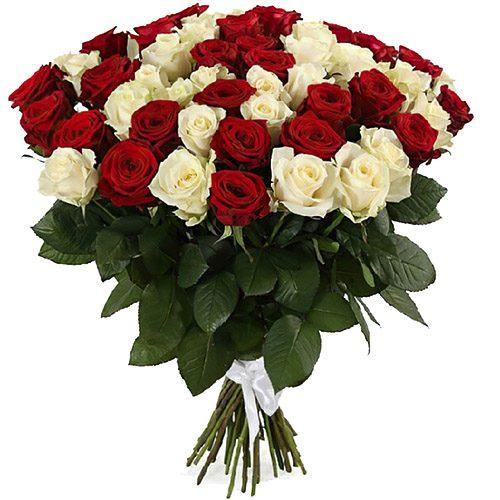 фото 51 роза красная и белая