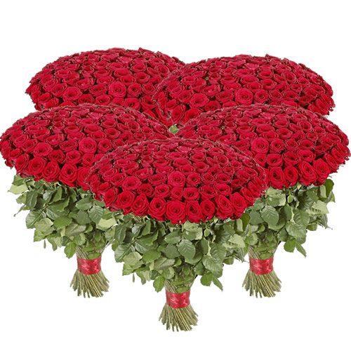 фото букета 501 красная роза